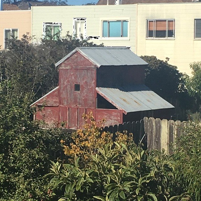 Unexpected barn full of chickens spotted while viewing 2050 24th Avenue. #living415